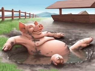 pig bath.png